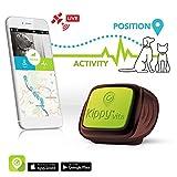 Kippy Vita - GPS para perros y gatos 2 en 1 (localizador y monitor de actividad)