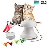 Juguete de láser para gatos FIRIK