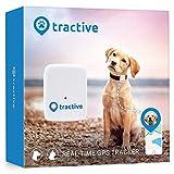 Tractive GPS Classic - Rastreador para perros pequeños y medianos