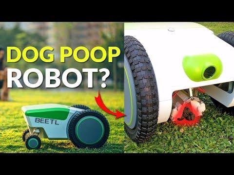 An Autonomous Dog Poop Robot