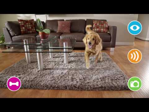 Petzi Treat Cam - WiFi Pet Camera & Treat Dispenser