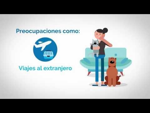 ¿Por qué un seguro de mascotas?. #santalucíamascotas