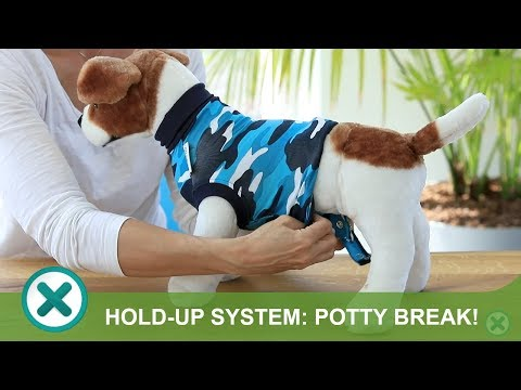 Ready for a potty break? Use the hold-up system!