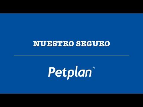 NUESTRO SEGURO || PETPLAN ||