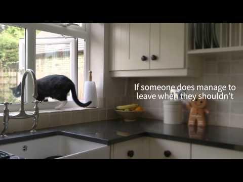 The SureFlap DualScan Microchip Cat Flap - TRIXIE