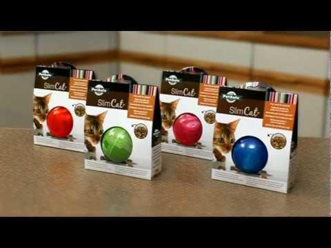 PetSafe® SlimCat™ Food-Dispensing Interactive Cat Toy
