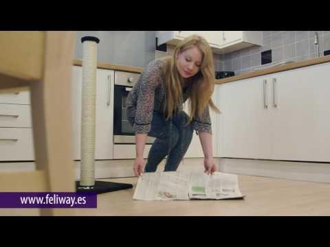 Cómo usar Feliscratch para que tu gato no arañe los muebles