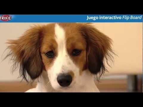 FlipBoard Dog Activity de Trixie
