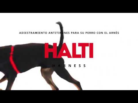 Arnés anti tirones Halti para perros de The Company Of Animals
