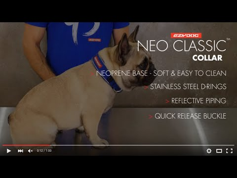 How to fit your Dog's Collar - EzyDog Neo Classic Dog Collar
