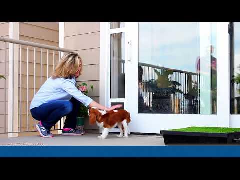 How to Install the PetSafe® Sliding Glass Door