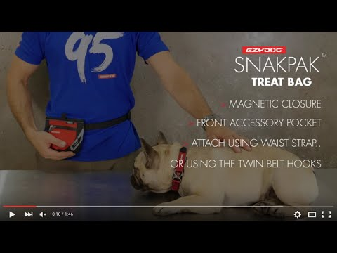 How to attach a Dog Treat Bag - EzyDog SnakPak Treat Bag