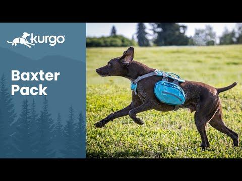 Kurgo Baxter Dog Backpack