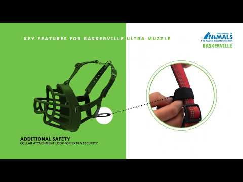 How to Fit The Baskerville ULTRA Muzzle
