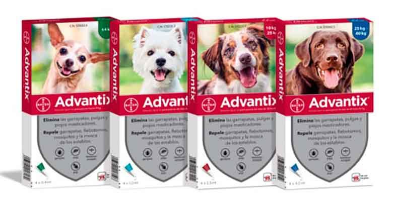Pipetas Advantix para perros - Antiparasitarias - Bayer