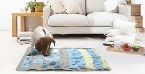 Alfombras olfativas para perros