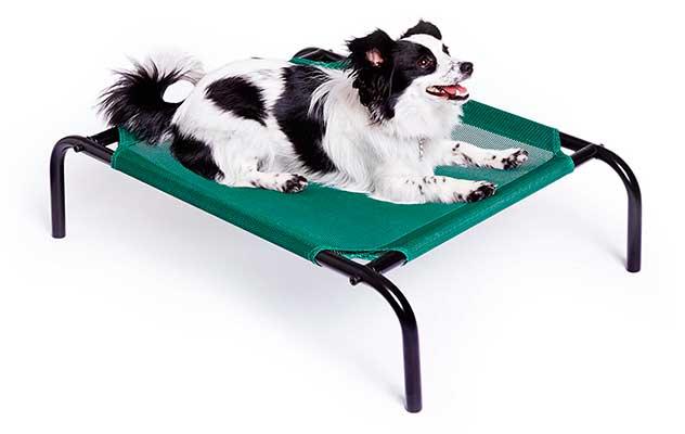 Cama elevada y fresca para mascotas - AmazonBasics
