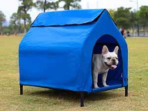 Caseta portátil para perros - ideal para viajes y vacaciones - AmazonBasics