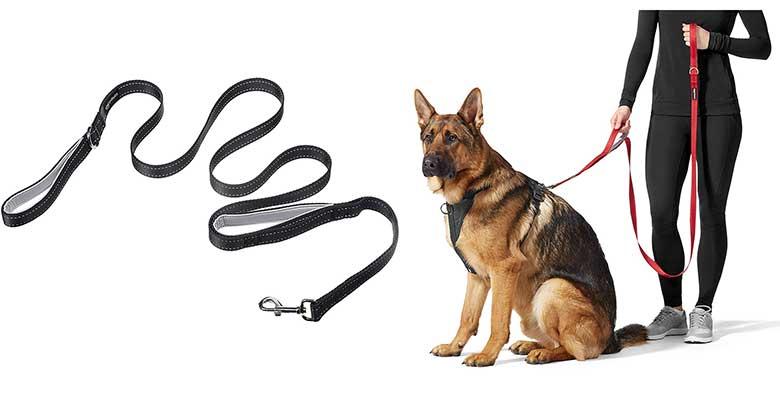 Correa para perros con dos asas - AmazonBasics