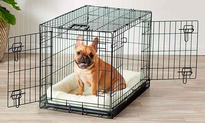 Transportín plegable de metal tipo jaula para mascotas - AmazonBasics