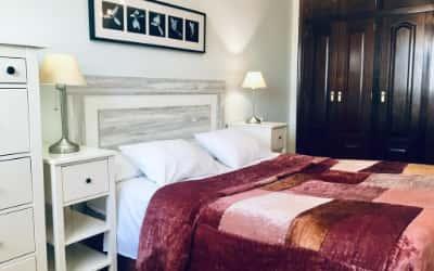 Apartamentos Confortarte admite mascotas en Oviedo