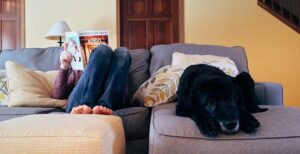 Apartamentos que admiten mascotas