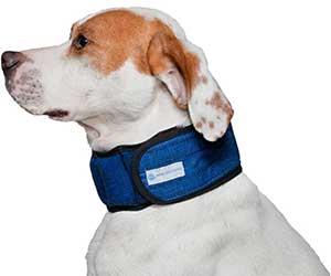 Collar refrescante para perros - Aqua Coolkeeper Collar