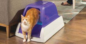 Areneros autolimpiables para gatos