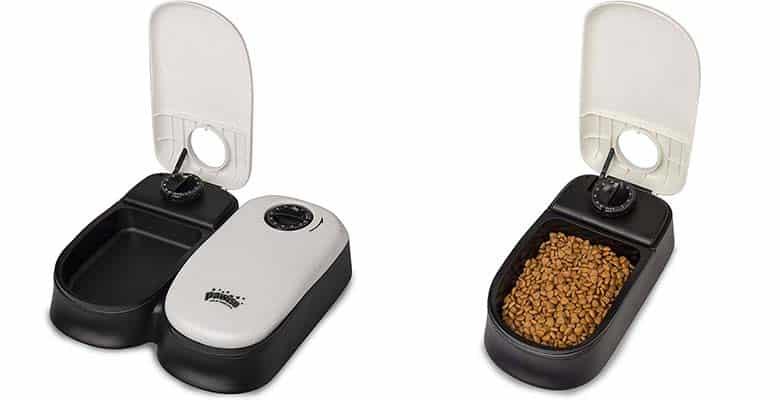 Comedero automático barato para perros y gatos - BIGWING Style