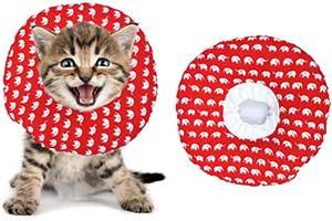 Collar isabelino para perros y gatos estilo rosquilla y con diseño original . BVAGSS