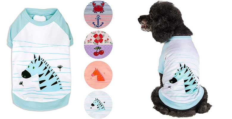Camiseta para perros original - Blueberry Pet