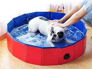 Bañera portátil y barata para perros - Decdeal