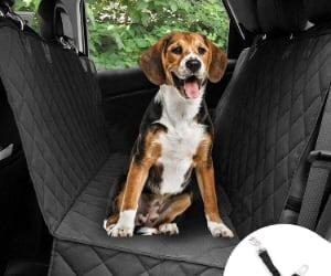 Protector de coche para perros con 3 modos de uso - Bonve Pet