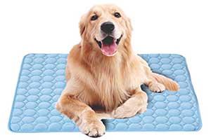 Manta de frío para perros - Branger