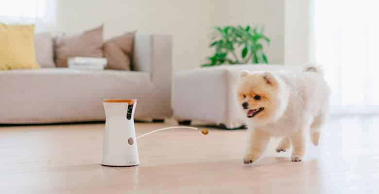 Furbo - Cámara regalo para perros y gatos