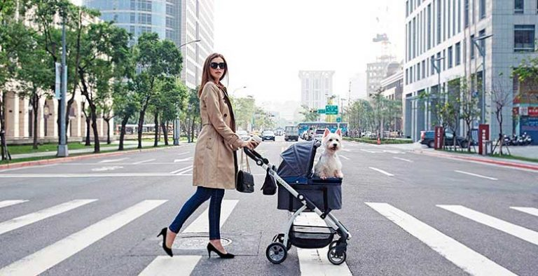 Carros para perros y gatos