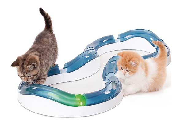 Juego interactivo para gatos, tipo circuito con pelotas - Catit Design Senses