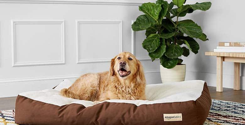 Colchones, cojines y colchonetas para perros