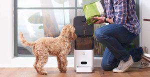 Comederos automáticos para gatos y perros
