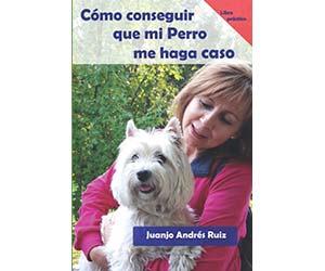 Cómo conseguir que mi perro me haga caso - Juanjo Andrés Ruíz