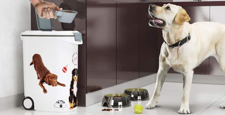 Contenedores de pienso para perros y gatos