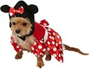 Disfraz de Minnie para perrita - Rubies