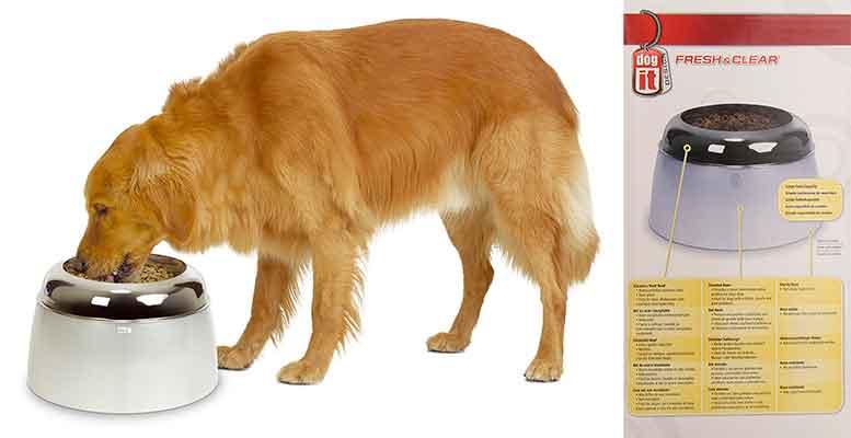 Comedero especial para perros grandes - Dog It