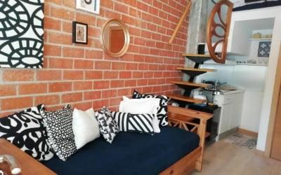 El Pozo - Villalobos Suite - Apartamento en Madrid para ir con mascota