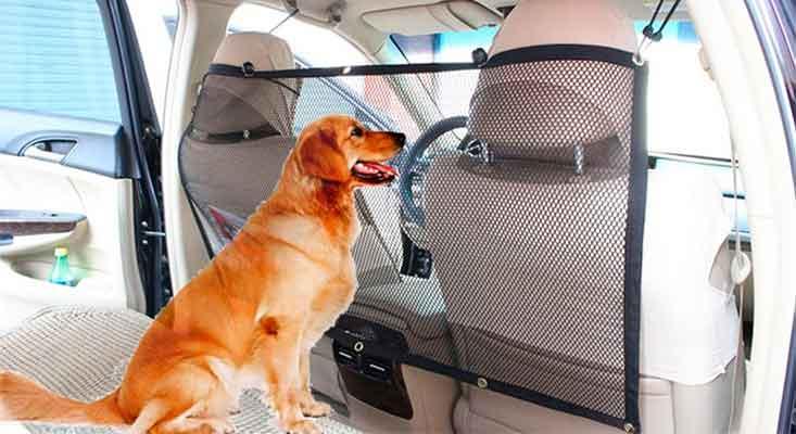 Red separadora para llevar al perro en el asiento trasero del coche - Focuspet