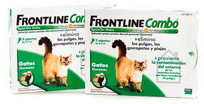 Pipetas antiparasitarias para gatos - Frontline Combo