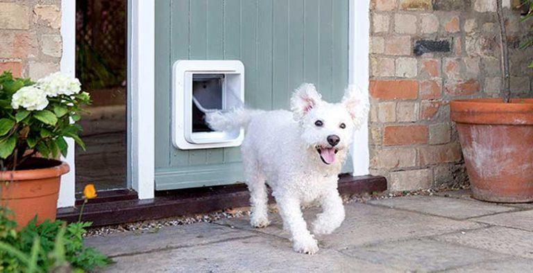 Gateras (puertas para perros y gatos)