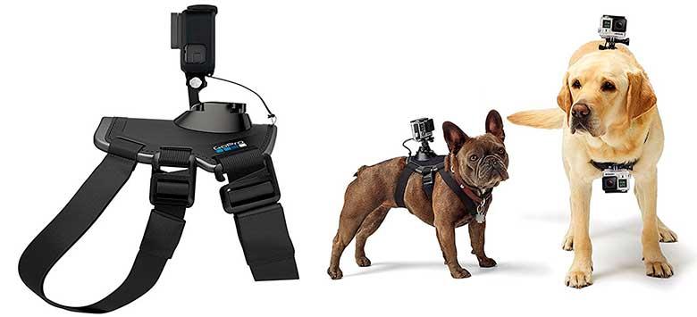 Arnés GoPro para perros - GoPro Fetch