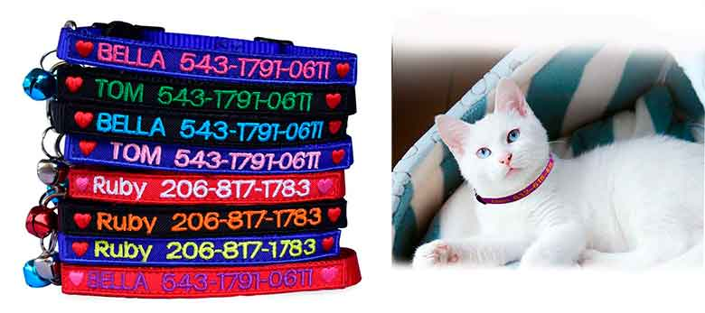 Collar personalizado para gatos - Graceful life