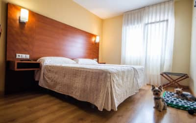 Viella hotel que acepta perros en Asturias